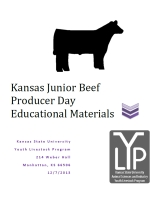 Beef Education Logo