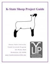 sheep front page